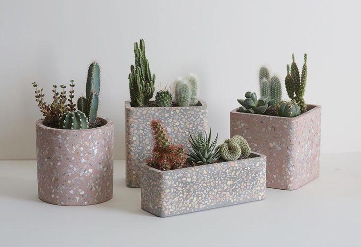 concrete-cactus-pot-grey